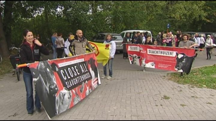 Buurt protesteert tegen slachthuis na geurhinder