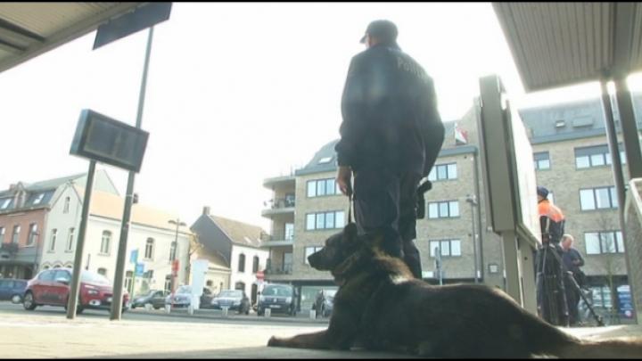 Politie zet extra politiepatrouilles in aan Mols station