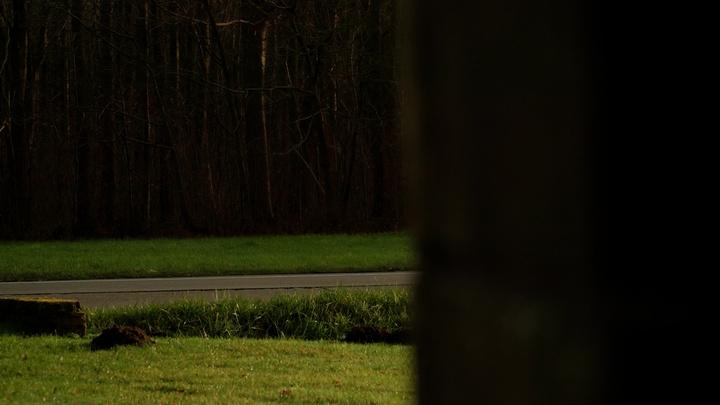 Reportage De Provincie - Hulshout