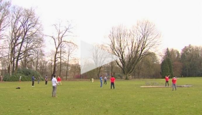 Cricketpitch aangelegd in stadspark Turnhout