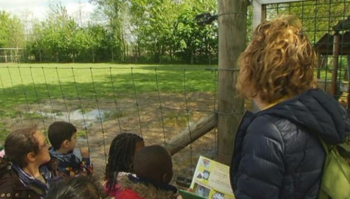 Kinderboerderij wil sluiten na burenprotest