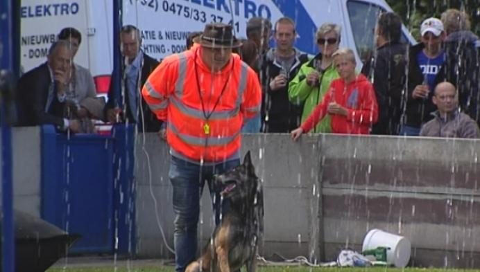 Grote prijs der provincies voor afgerichte honden