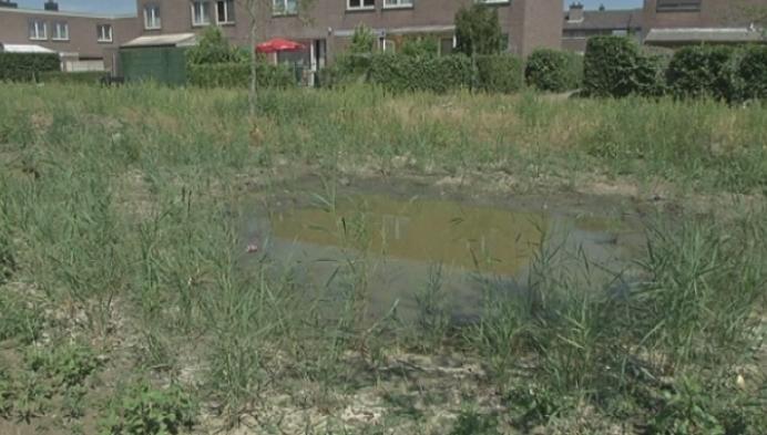Slordig parkje in Hulshout zorgt voor ongenoegen