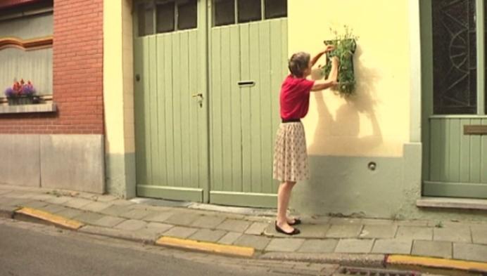 Mechelse binnenstad fleurt op met hangtuintjes