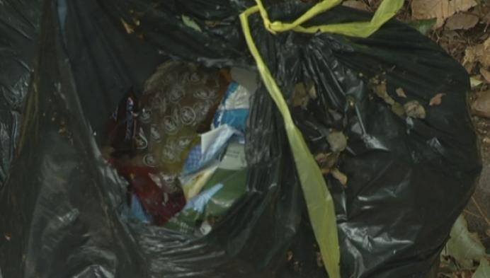 Bewoners van Turnhout ongerust over sluikstort