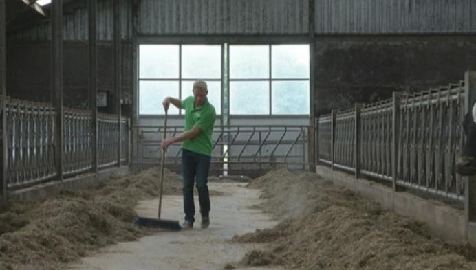 Heistse melkveehouder betoogt in Brussel