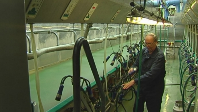 Meerhoutse melkveehouder betoogt morgen in Brussel
