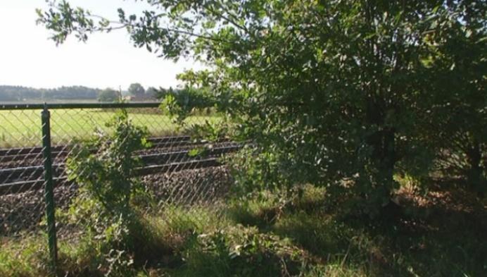 Bewoners rooien dan toch bomen langs spoorlijn