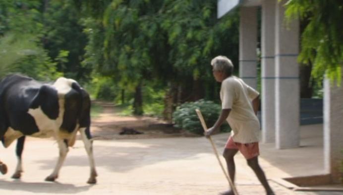 Leerlingen op inleefreis naar India aan laatste dag toe