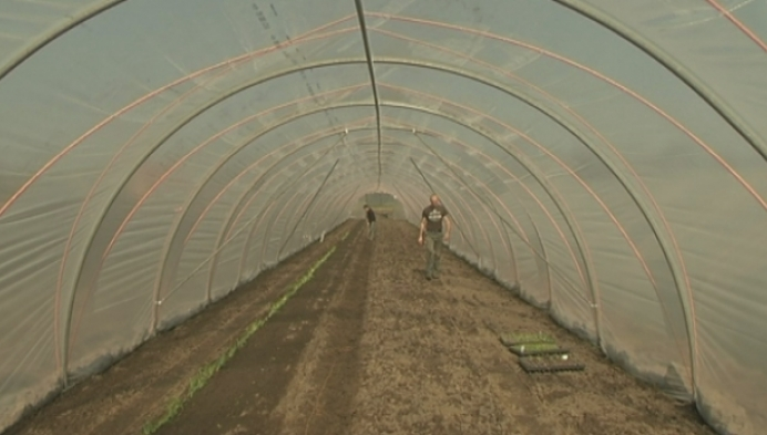 Stadsboerderij Turnhout breidt uit en bedient de horeca