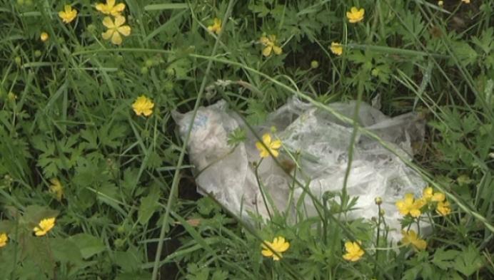 Hondenweide Beerse ligt geregeld vol afval