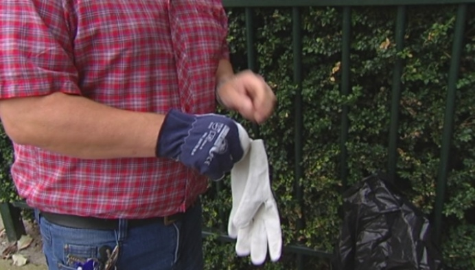 Afval van drank- en druggebruik in Turnhoutse tuinen en parkjes