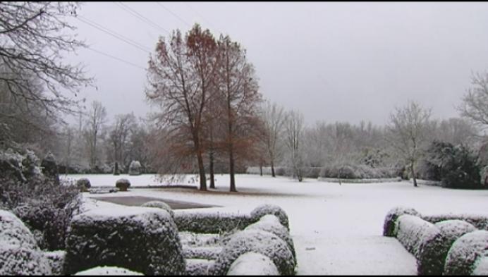Genieten van de eerste sneeuw in Puurs en Katelijne
