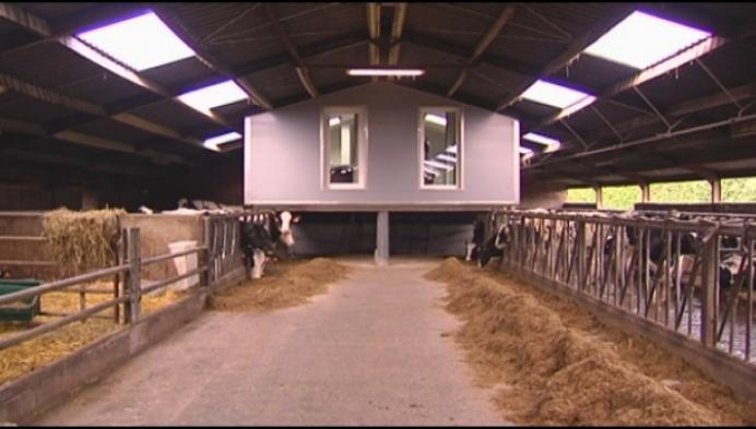 Overnachten tussen de koeien