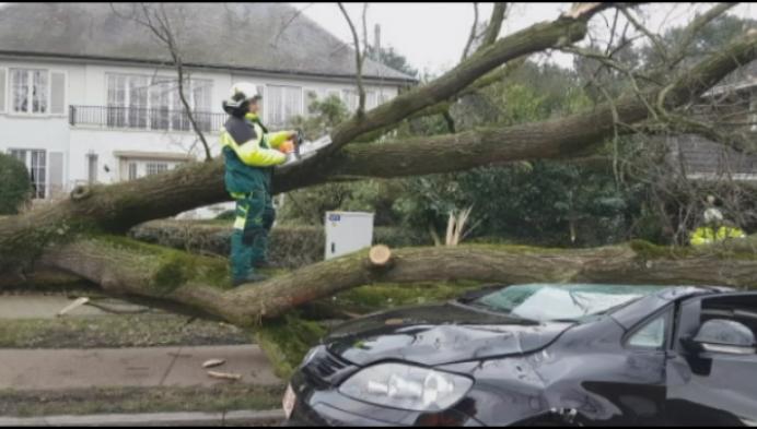 Kijkers delen schade tijdens en na de storm
