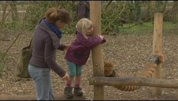 Regio Neteland wil kinderen meer laten buiten spelen