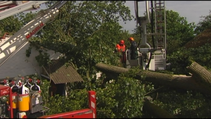 Zware boom beschadigt woning en 3 auto's in Lille