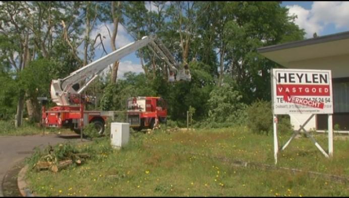 Brandweer ruimt nog tot morgen stormschade op