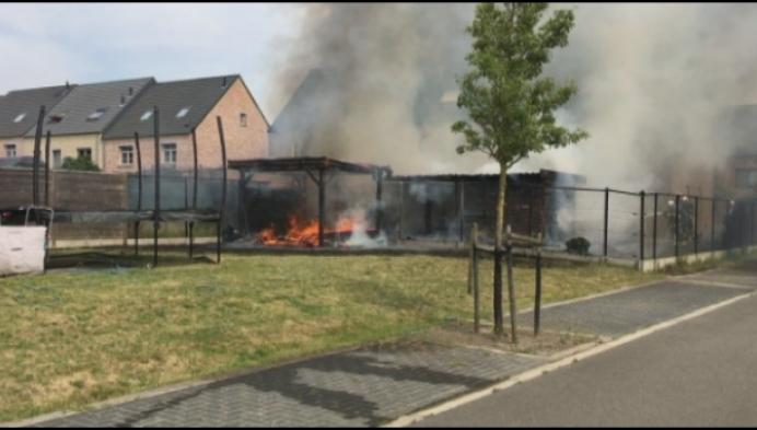 3 tuinhuizen in Beerzel gaan volledig in vlammen op