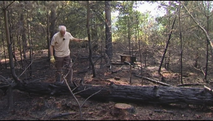 """Nieuwe bosbrand in Staatsbossen: """"Wees extra alert"""""""