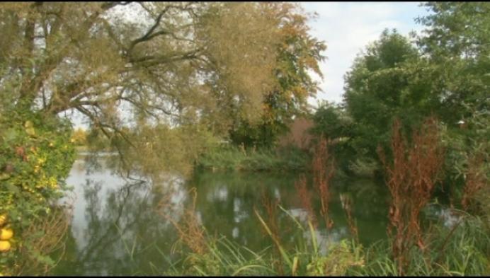 Actiegroep Mannenwiel zet strijd voor natuurgebied verder