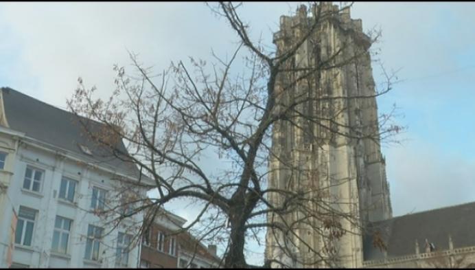 Mechelen investeert in duurzame kerstverlichting