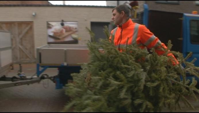 Duffelse kerstbomen worden niet meer verbrand
