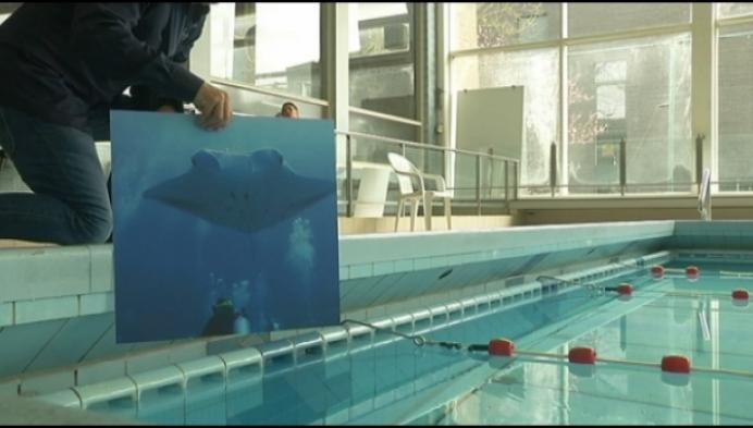 Duikclub Aronnax sluit oude zwembad Heist en opent het nieuwe met records