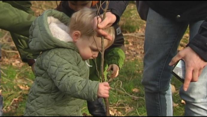 1 en 2-jarigen planten geboortebos