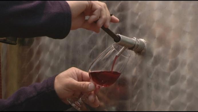 Overstock aan wijn bij Kapittelberg Herselt
