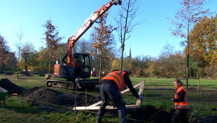 Bomenpark in ere hersteld op Kasteel d'Ursel