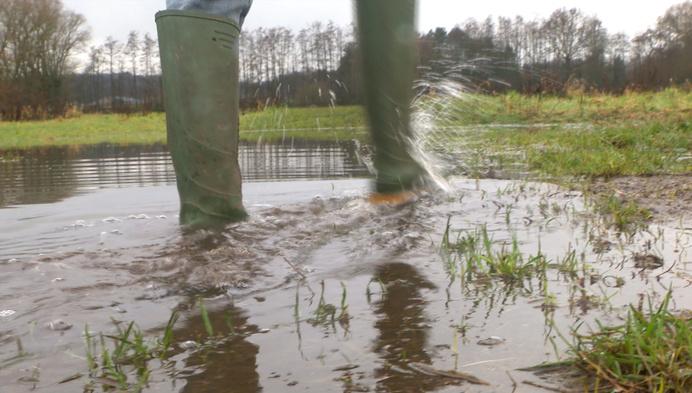 Ook niet meer wandelen in corona-tijd door wateroverlast