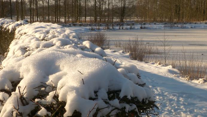 """Stevige winterprik: """"Maar net geen koudegolf"""""""