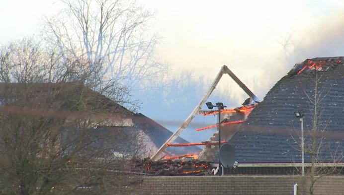 Uitslaande brand in stoeterij, dieren gered