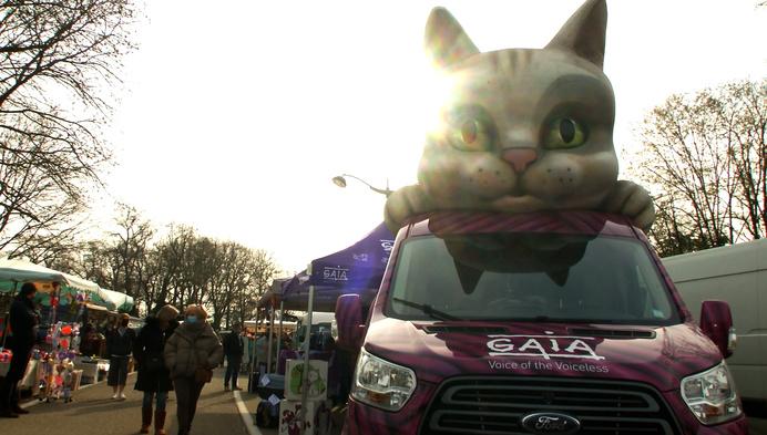 Catmobile van GAIA houdt op Herentalse vrijdagmarkt