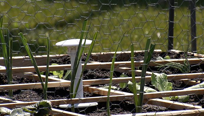 Wetenschappers planten 25 mini-tuintjes in Laakdal