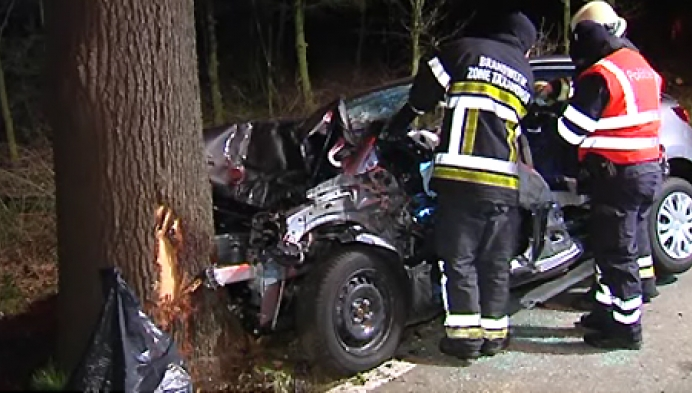 Duif veroorzaakt zwaar ongeval in Ravels
